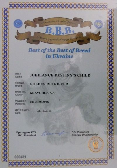 Best of the Best of Breed in Ukraine